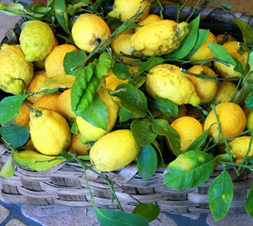 Лимоны для заправки