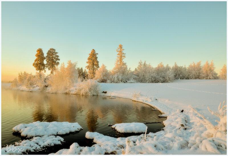 Тепло зимы