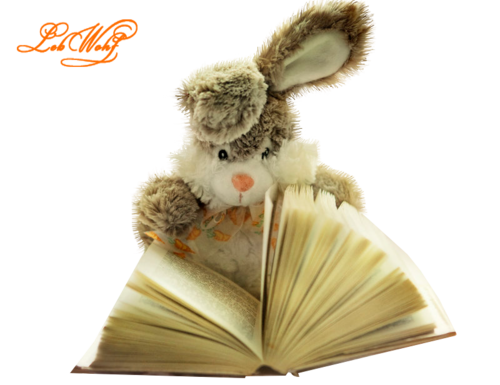love_reading_by_lucy_luveres-d39h11z.png