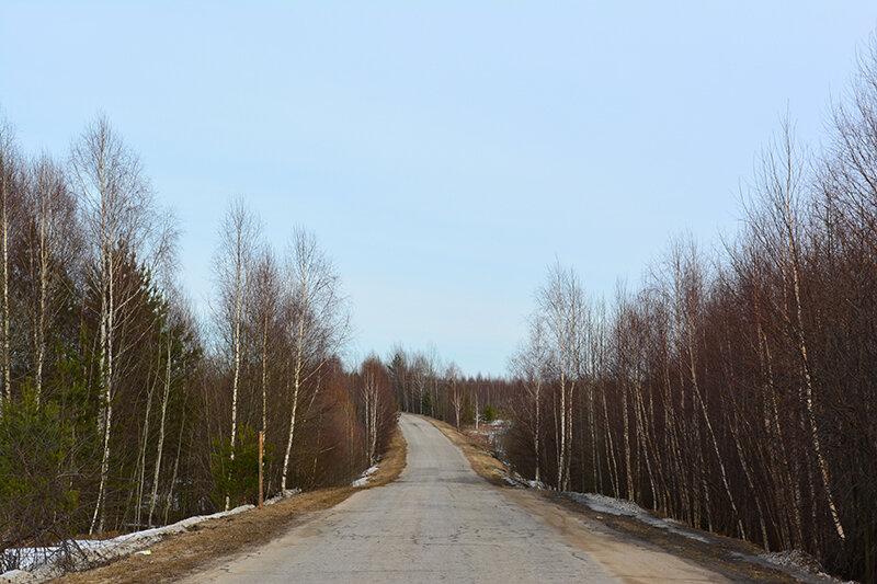 весна_дорога2