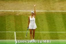 http://img-fotki.yandex.ru/get/9745/14186792.3b/0_d97c8_2d29e97e_orig.jpg