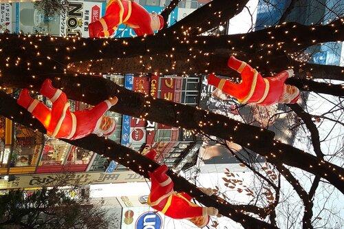 Новогодние украшения в Сибуе