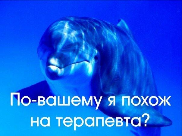 http://img-fotki.yandex.ru/get/9745/252394055.0/0_deeee_57fb33f1_XL.jpg