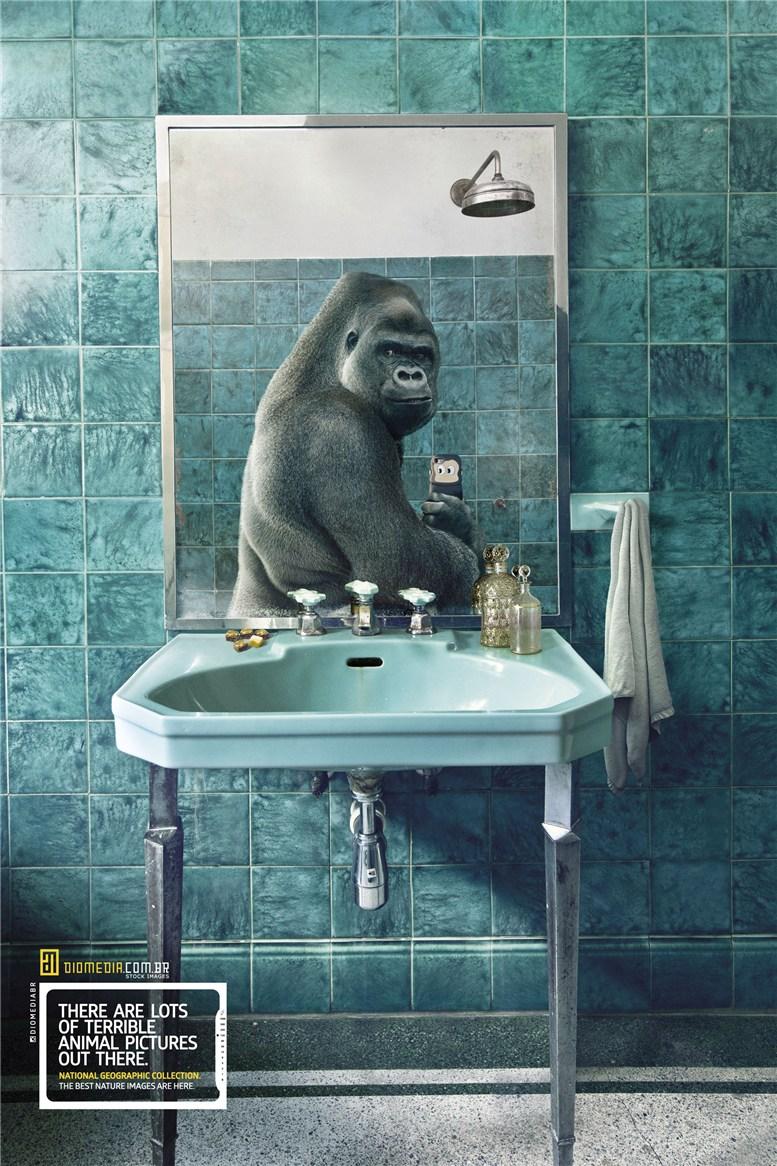 Рекламная кампания сервиса стоковых фотографий Diomedia - National Geographic Collection - Gorilla
