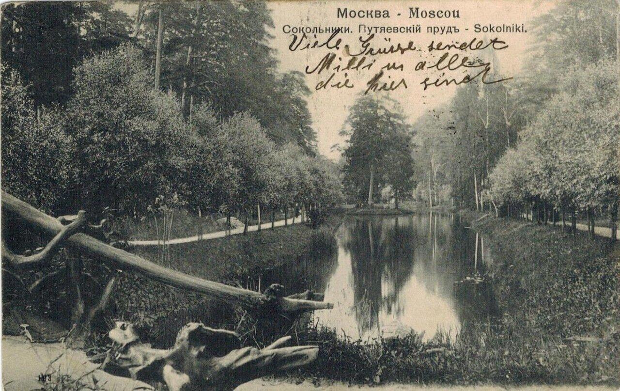 Окрестности Москвы. Сокольники. Путяевский пруд