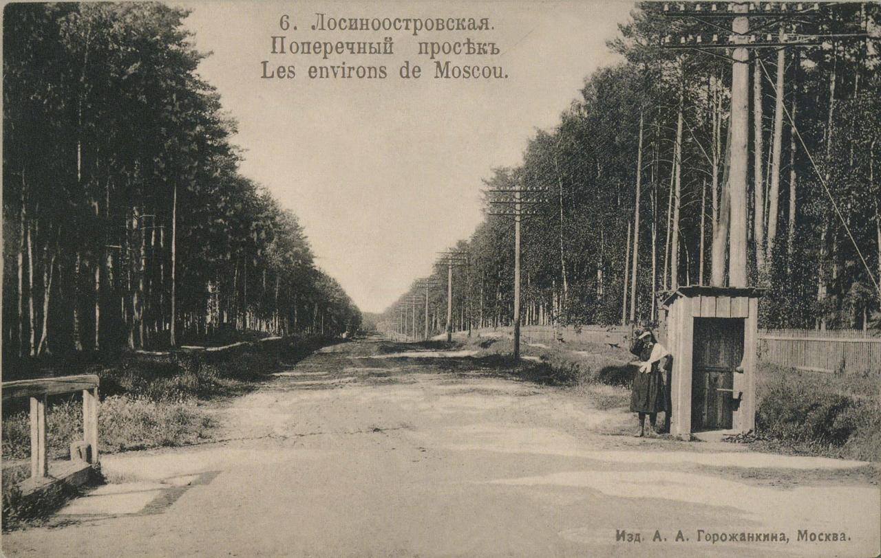 Окрестности Москвы. Лосиноостровская. Поперечный просек