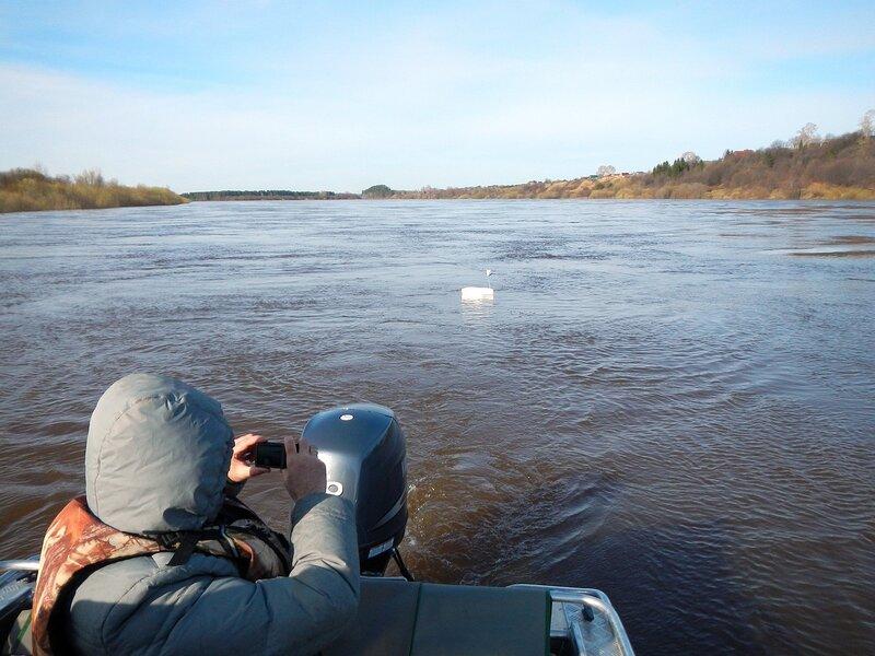 Пенопластовый кораблик с GPS-трекером собирает данные о скорости течения воды в Вятке