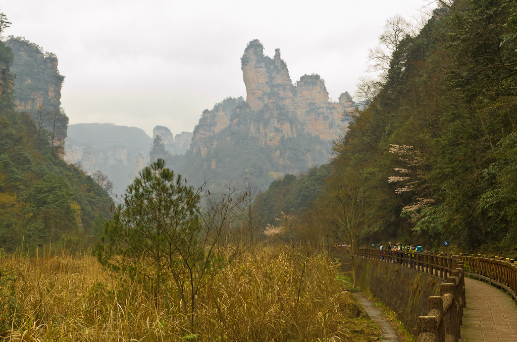Фото 6. Будут эти пейзажи парка Чжанцзяцзе в Китае еще долго мне сниться