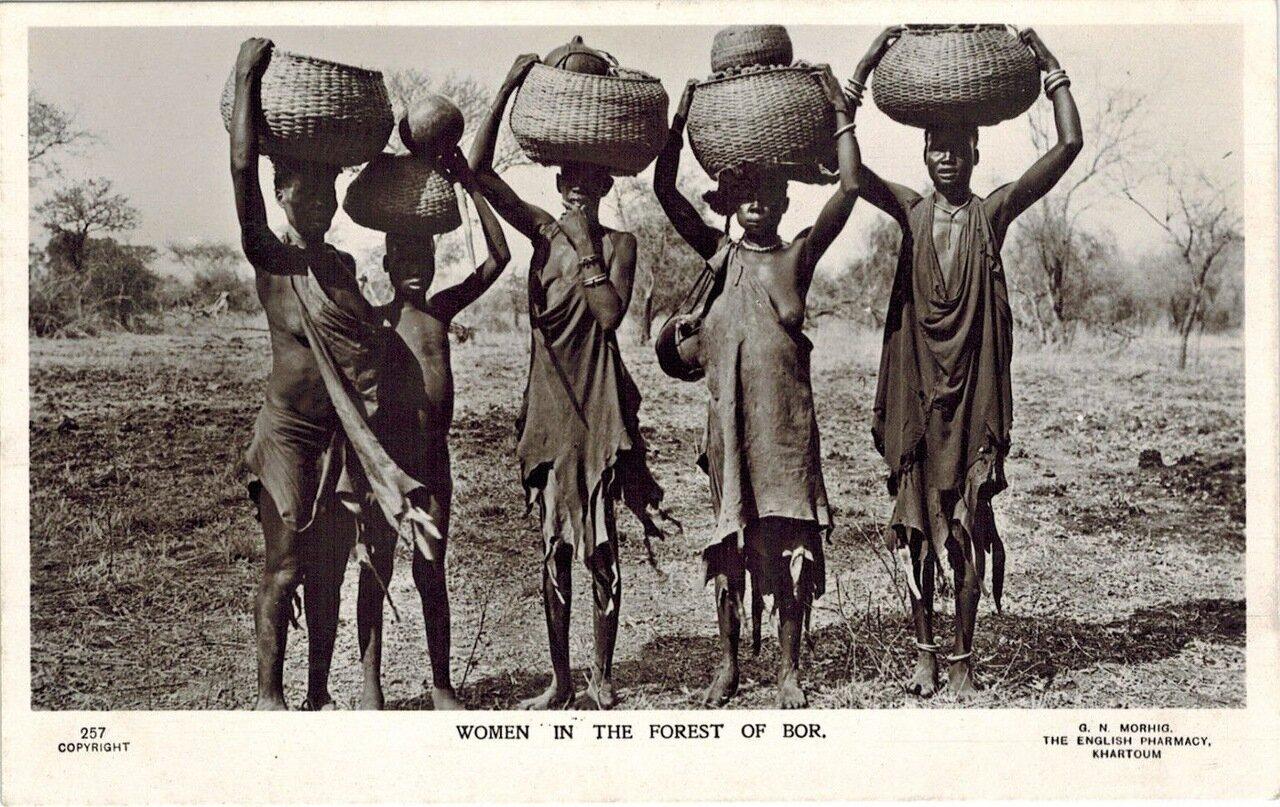 1910. Женщины в лесу Бора, Судан