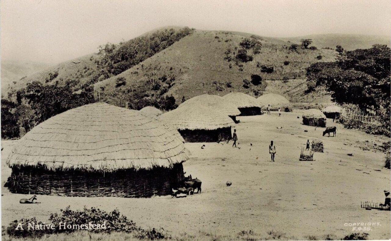 1910. Поселение аборигенов в Южной Африке