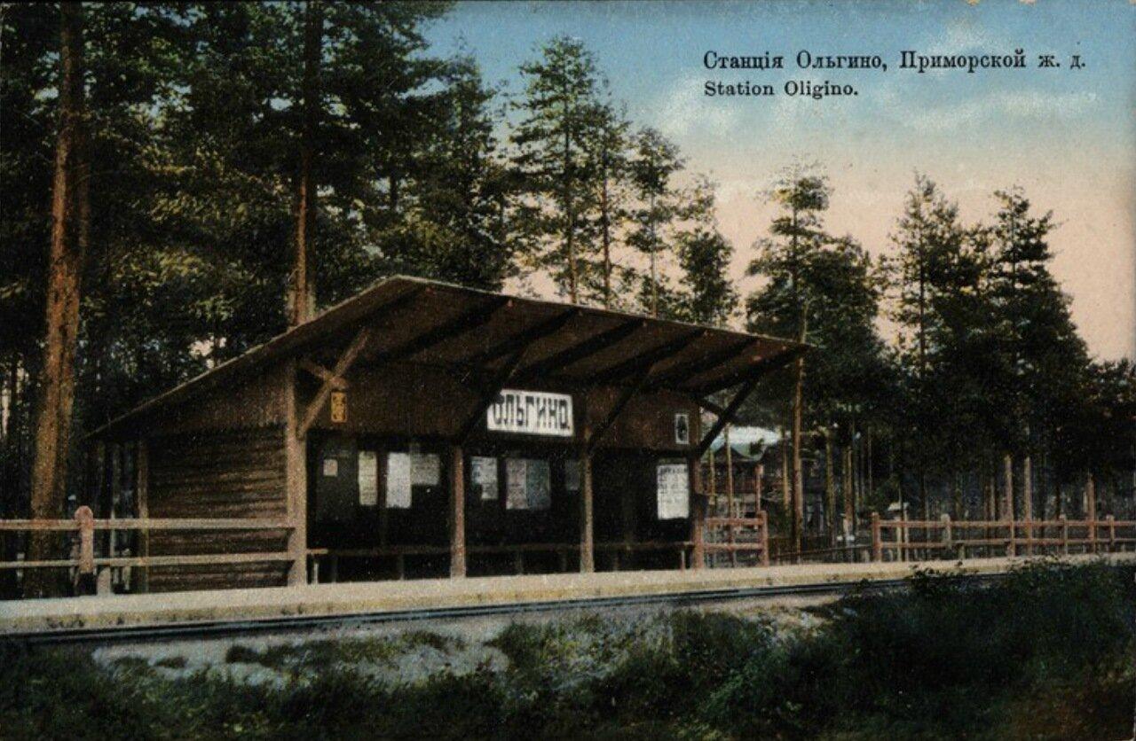 Ольгино. Станция