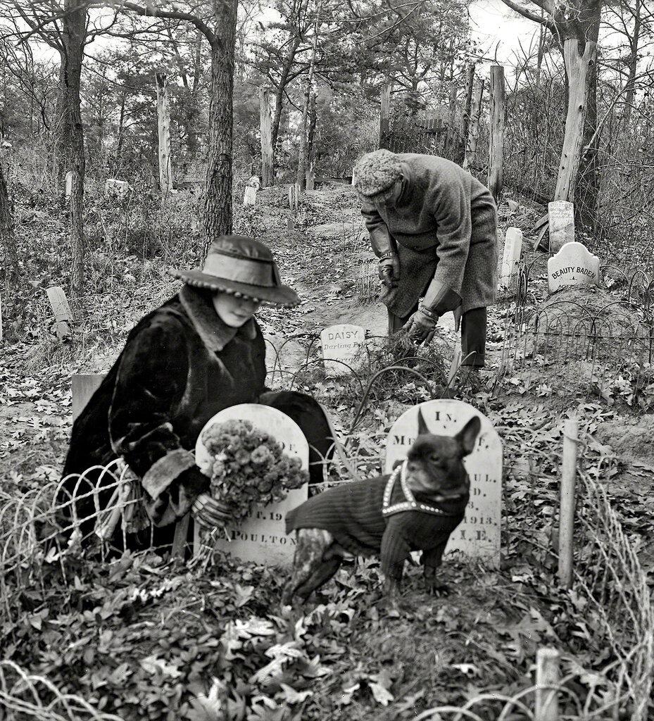 Dog Cemetery, Washington DC c.1926