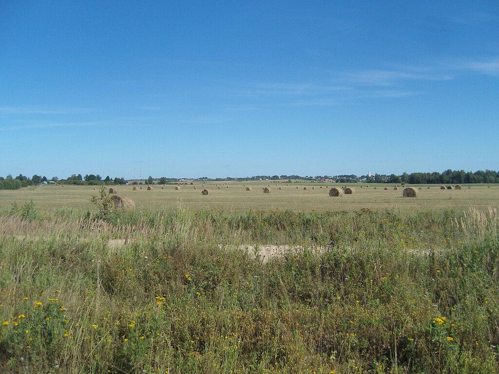 брикеты на поле у Нагорья