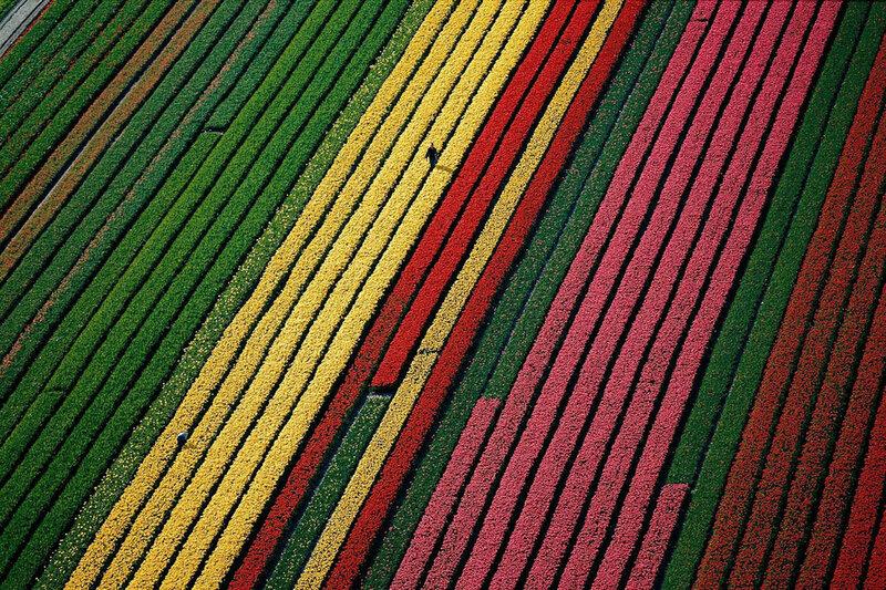 Yann Arthus-Bertrand. Небесная красота Земли. Лучший аеро-фотограф современности. 54 кадра