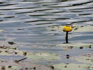 На Рябчинском озере.