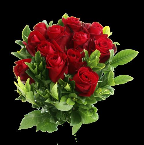 http://img-fotki.yandex.ru/get/9747/192316549.20c/0_dfbe0_29239fd7_L.png