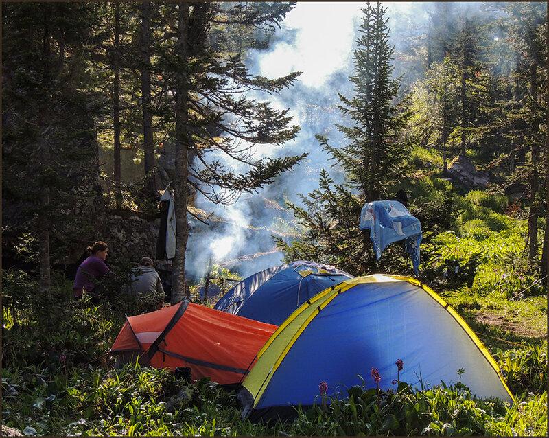 Наш лагерь в лесу