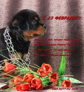 http://img-fotki.yandex.ru/get/9747/44768692.ba/0_9afaf_991c8cbc_M.jpg