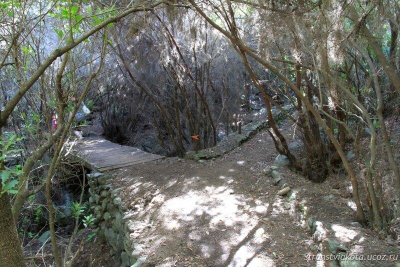 Ла Пальма, петроглифы в Ла Зарса