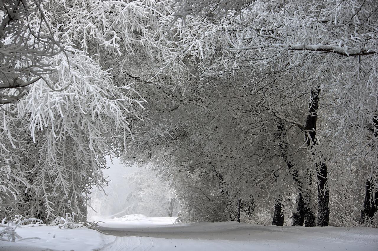 Погода в казе на неделю таштагольский район