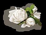 http://img-fotki.yandex.ru/get/9747/97761520.cf/0_7fbd9_e0b98d6e_orig.png