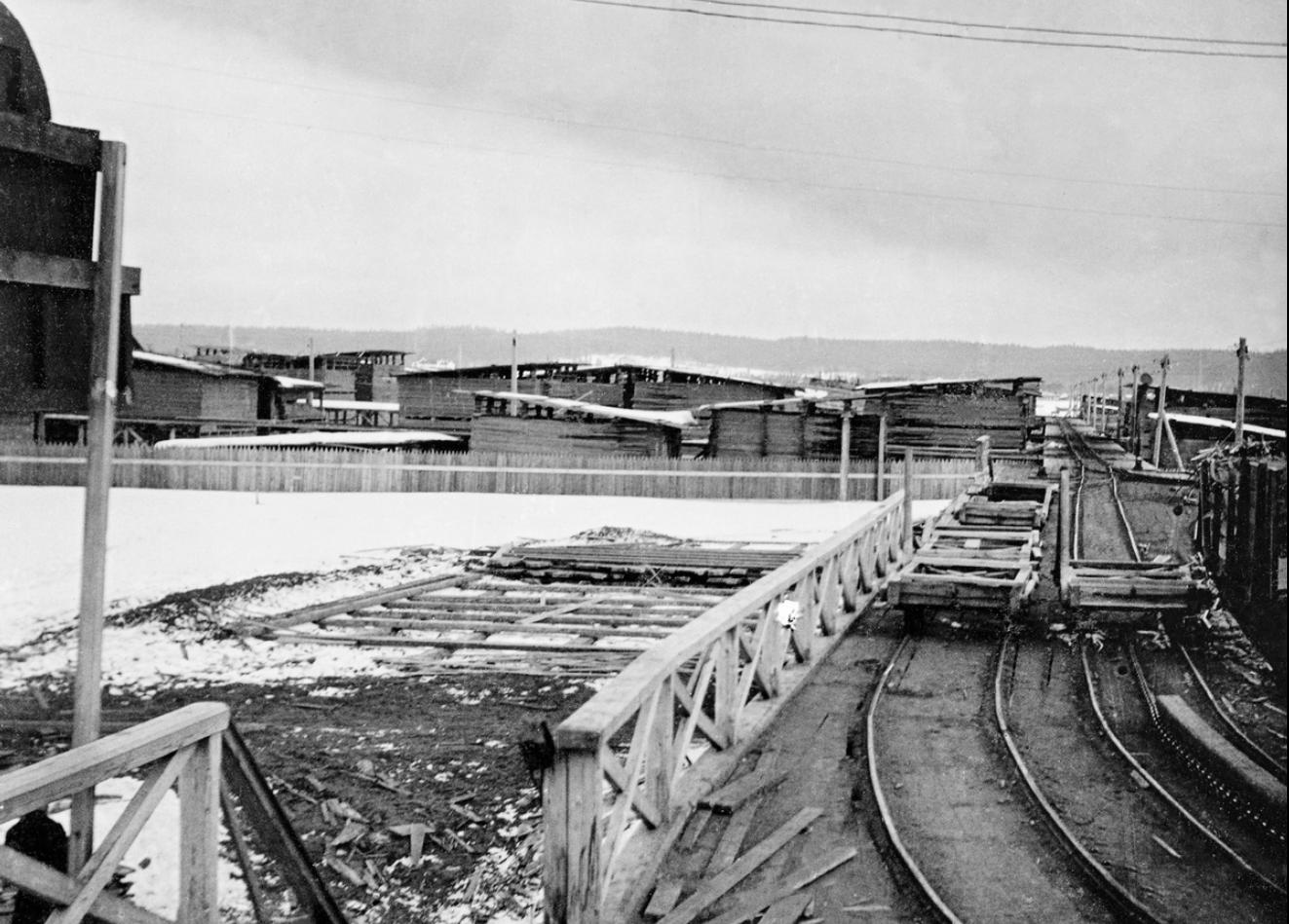 Лесопильный завод Ко. Онежского Лесного Торга. Железнодорожные перевозки из пильного цеха