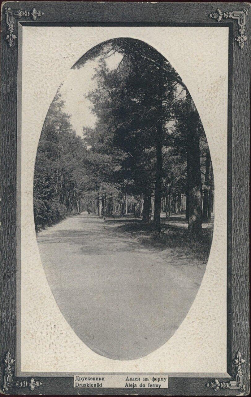 Аллея на ферму. 1904
