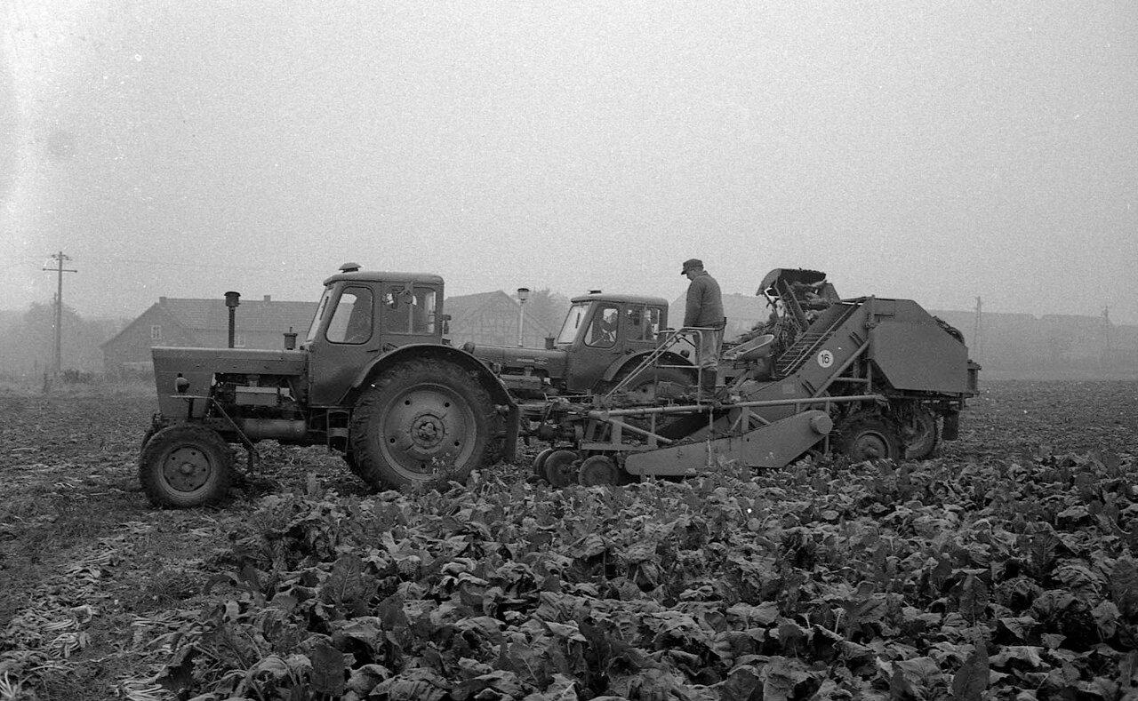 Восточная Германия, Хоххайм, октябрь 1972
