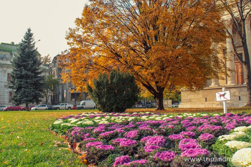Осенний Будапешт 16.jpg
