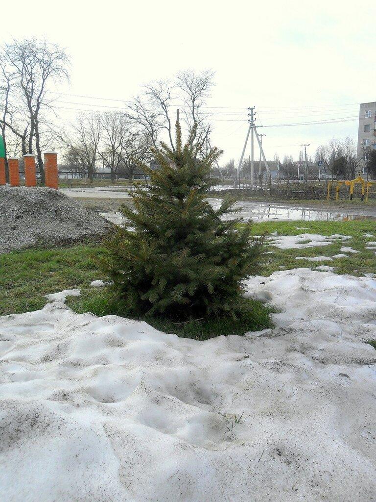 Превращение снегов в состояние водное...