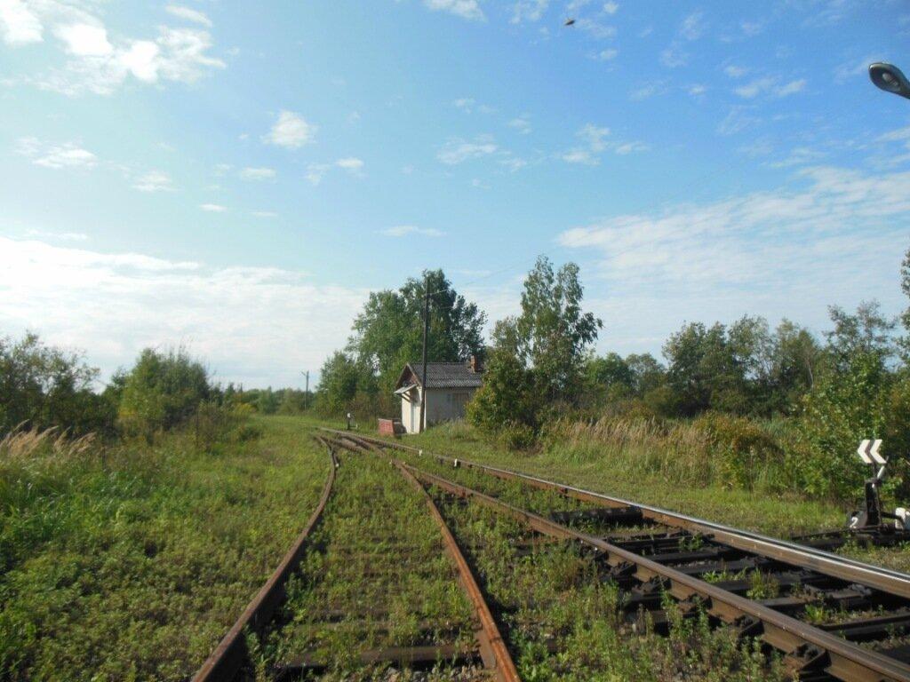 Погода в с бессоновка новоузенского района саратовской области
