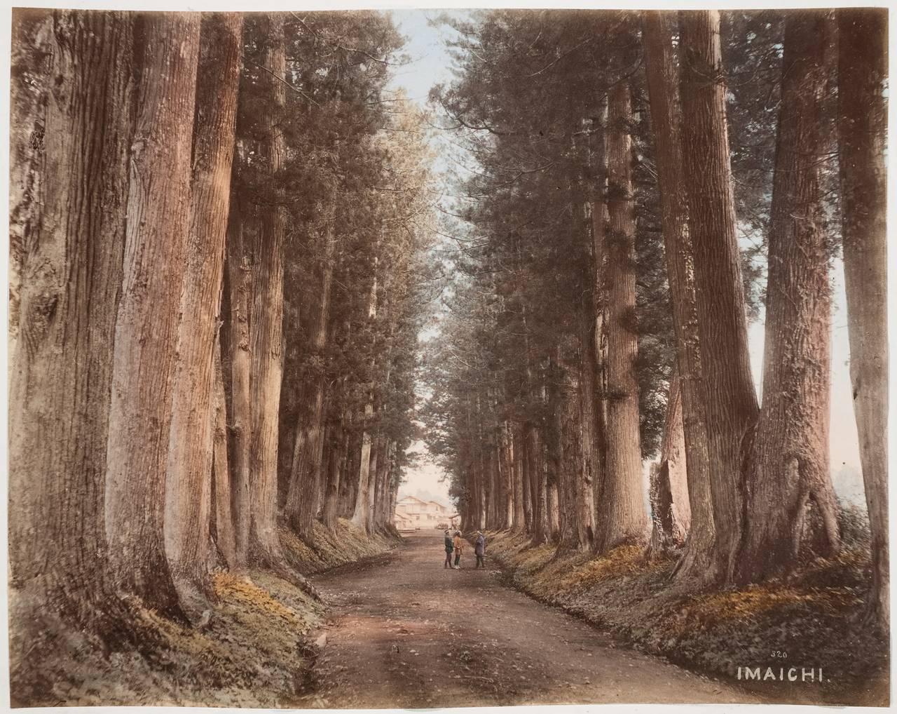Дорога в Имаити