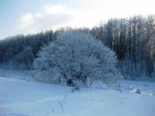 http://img-fotki.yandex.ru/get/9749/131884990.5c/0_c25c3_b52f5300_L.jpg