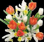Holliewood_SpringFaeries_Flowers5.png