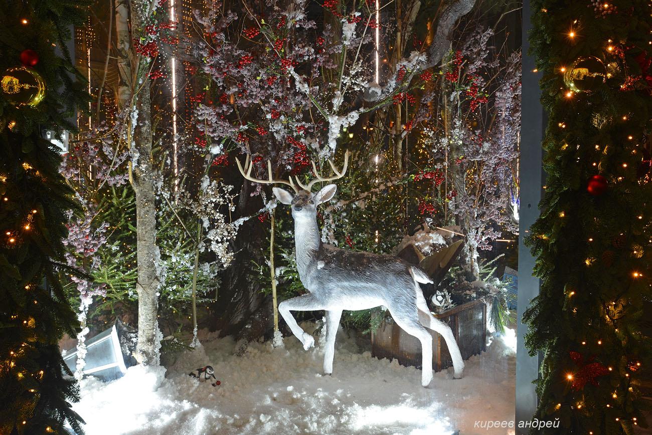 Сказочный лес на Манежной площади