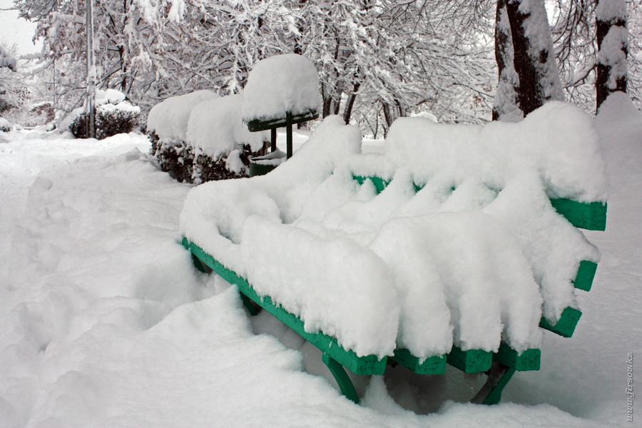 winter8.JPG