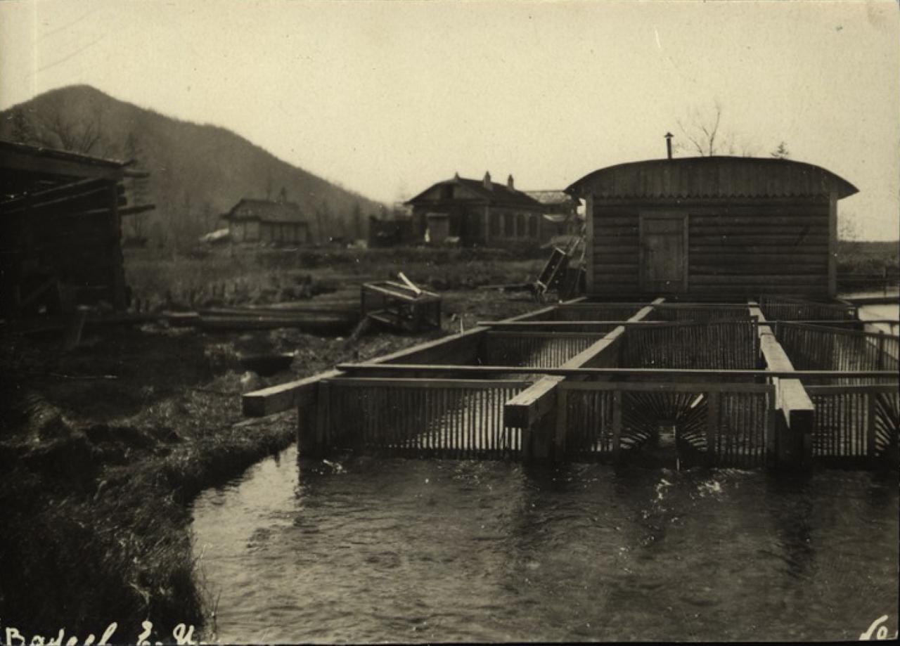 Теплое озеро. Рыборазводный завод