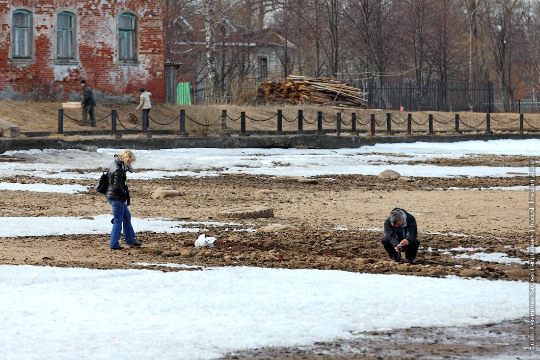поиски старинных артефактов на обнаженном волжском дне в Калязине
