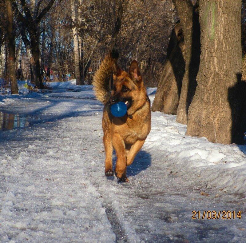 http://img-fotki.yandex.ru/get/9751/134559744.1c/0_bfa1e_def8e5dd_XL.jpg