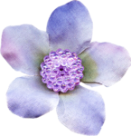 Flower Hallow (7).png