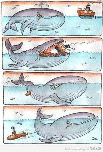 Комиксы-кит.jpeg