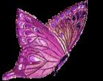 Бабочка.png