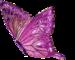 Бабочка-отражение.png