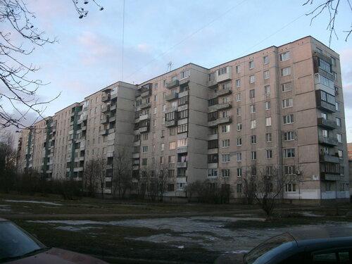 Будапештская ул. 88к3