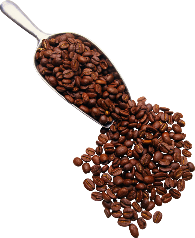 Petoos_Coffee and Chocolate_el (120).png