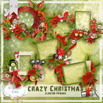 Crazy  Christmas