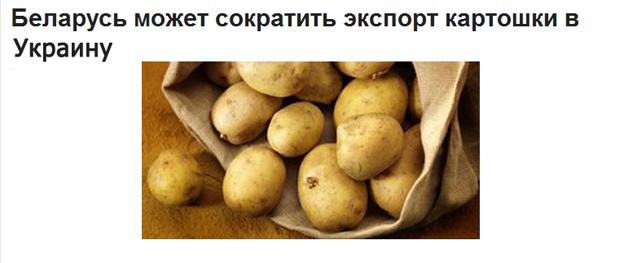 Захватчики мэрии Киева смастерили картошкострел