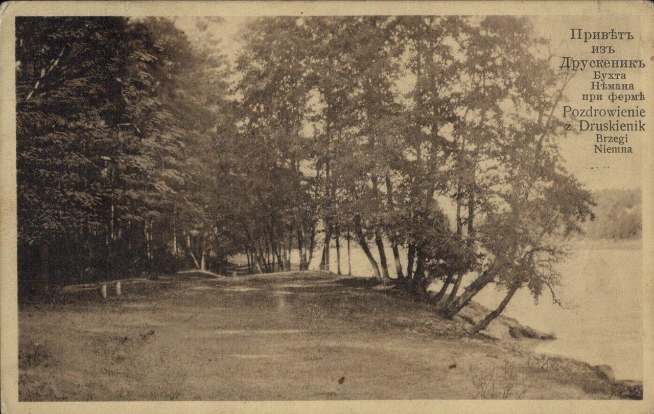 Бухта Немана при ферме. 1913