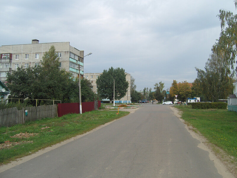 улица в Серебряных Прудах