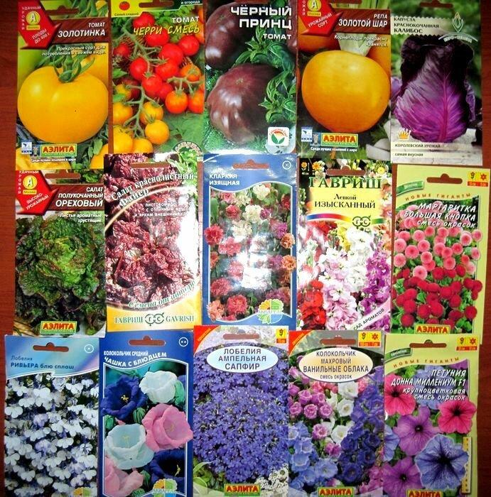 оби каталог цветы:
